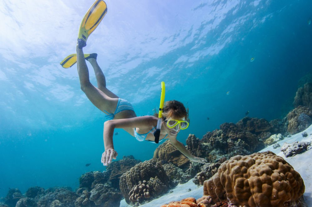 Best Snorkels for an Effortless Snorkeling Experience