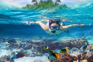 Snorkeling in Maldives: Where and When to Go