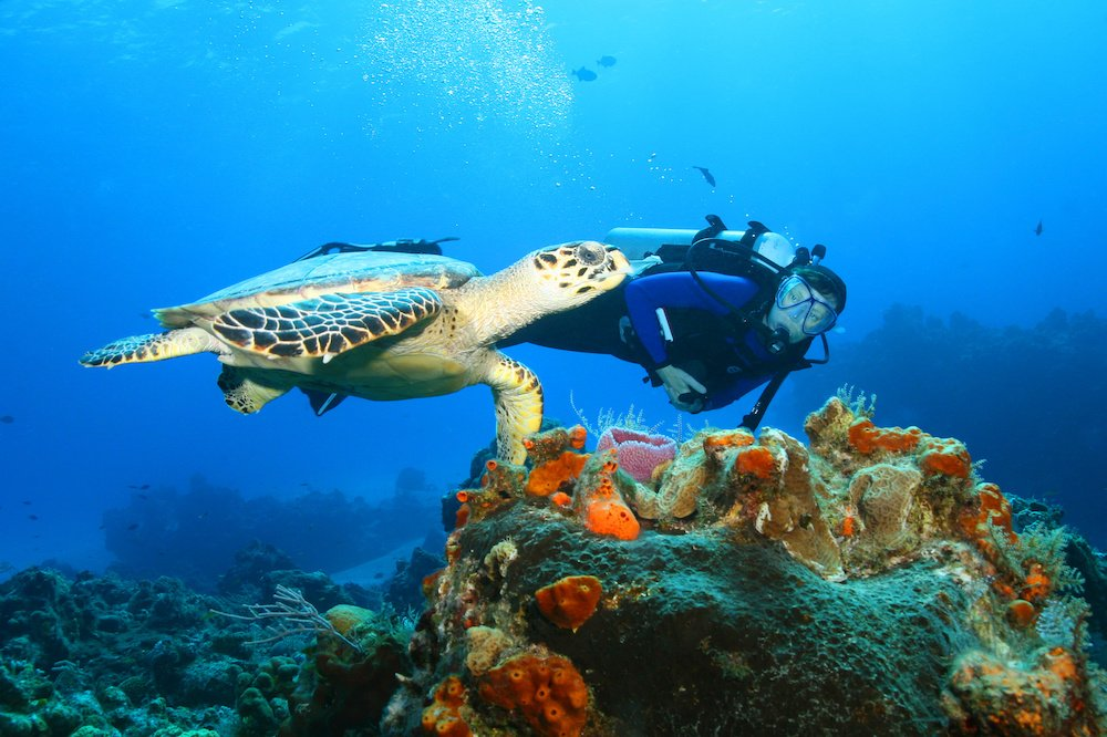 best places to scuba dive in europe