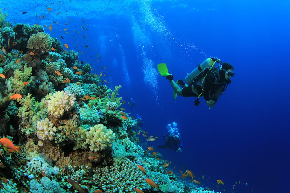 best scuba diving in the usa