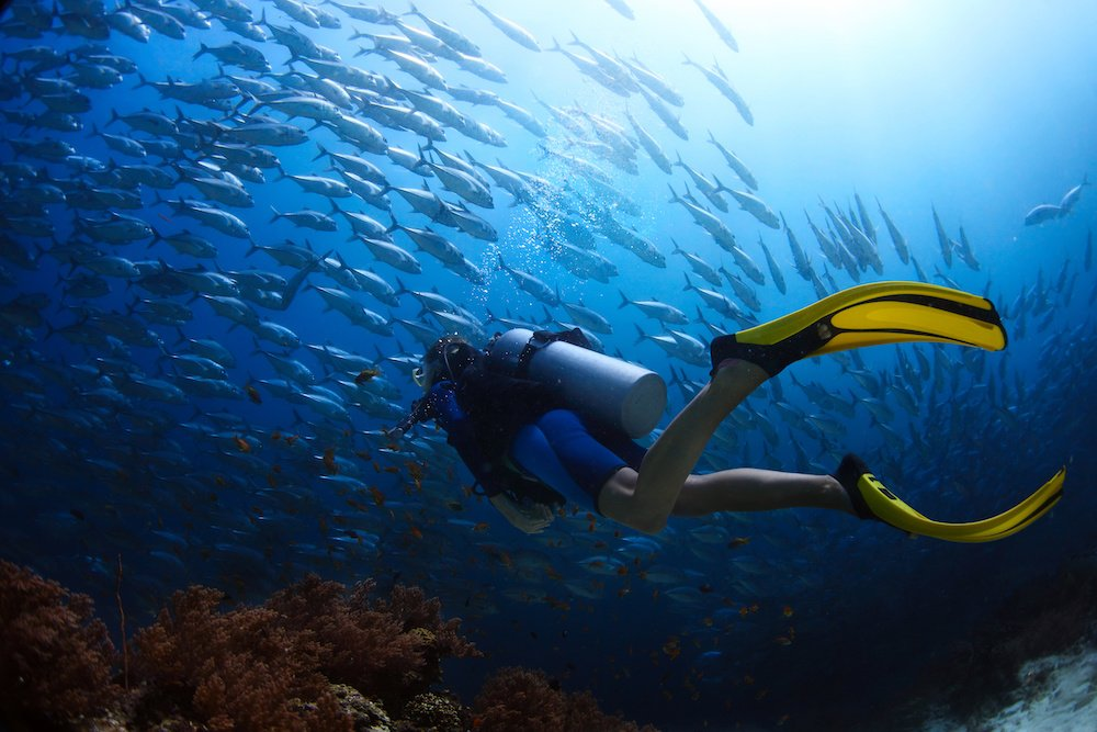 canary islands scuba diving