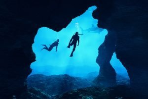 Diving in Canada: The Best Spots
