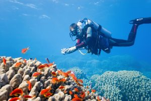 Scuba Diving Mediterranean Waters: The Best-Kept Secrets