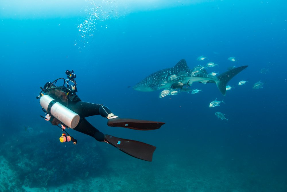 best places to scuba dive in asia