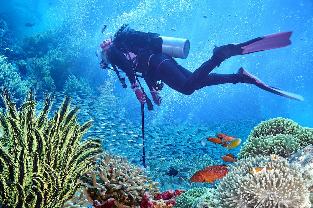 best scuba diving in andaman