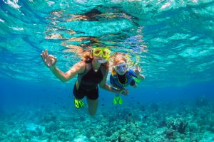 Diving in Hawaii: A Quick Guide
