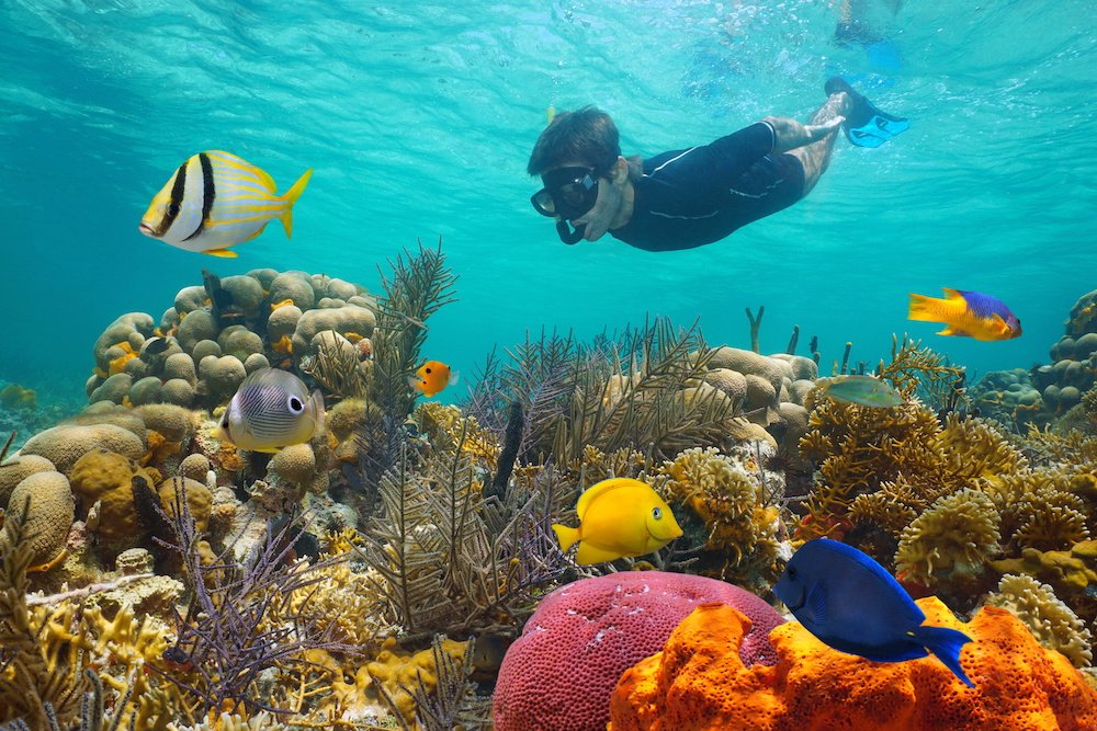 best snorkeling central america