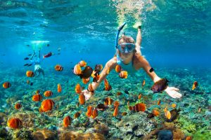 Snorkeling Philippines: The Many Choices