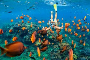 Snorkeling Hawaii: Where and When to Visit